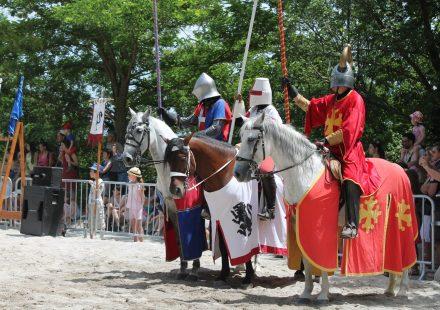 Middeleeuwsfeest